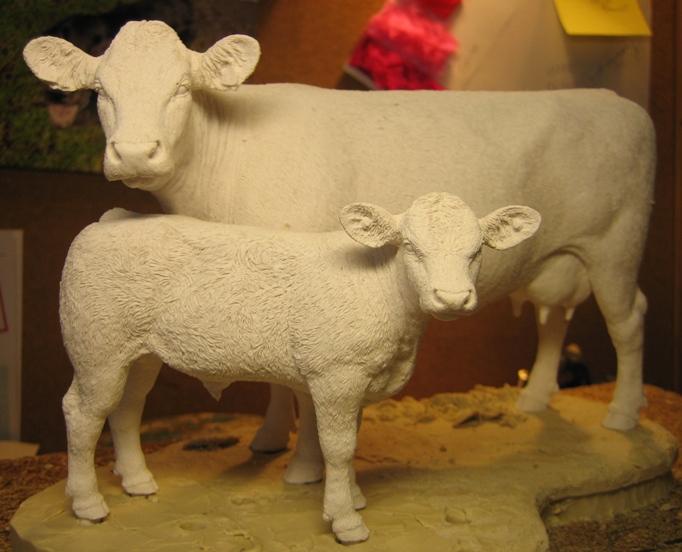 Beef shorthorn wax 2009