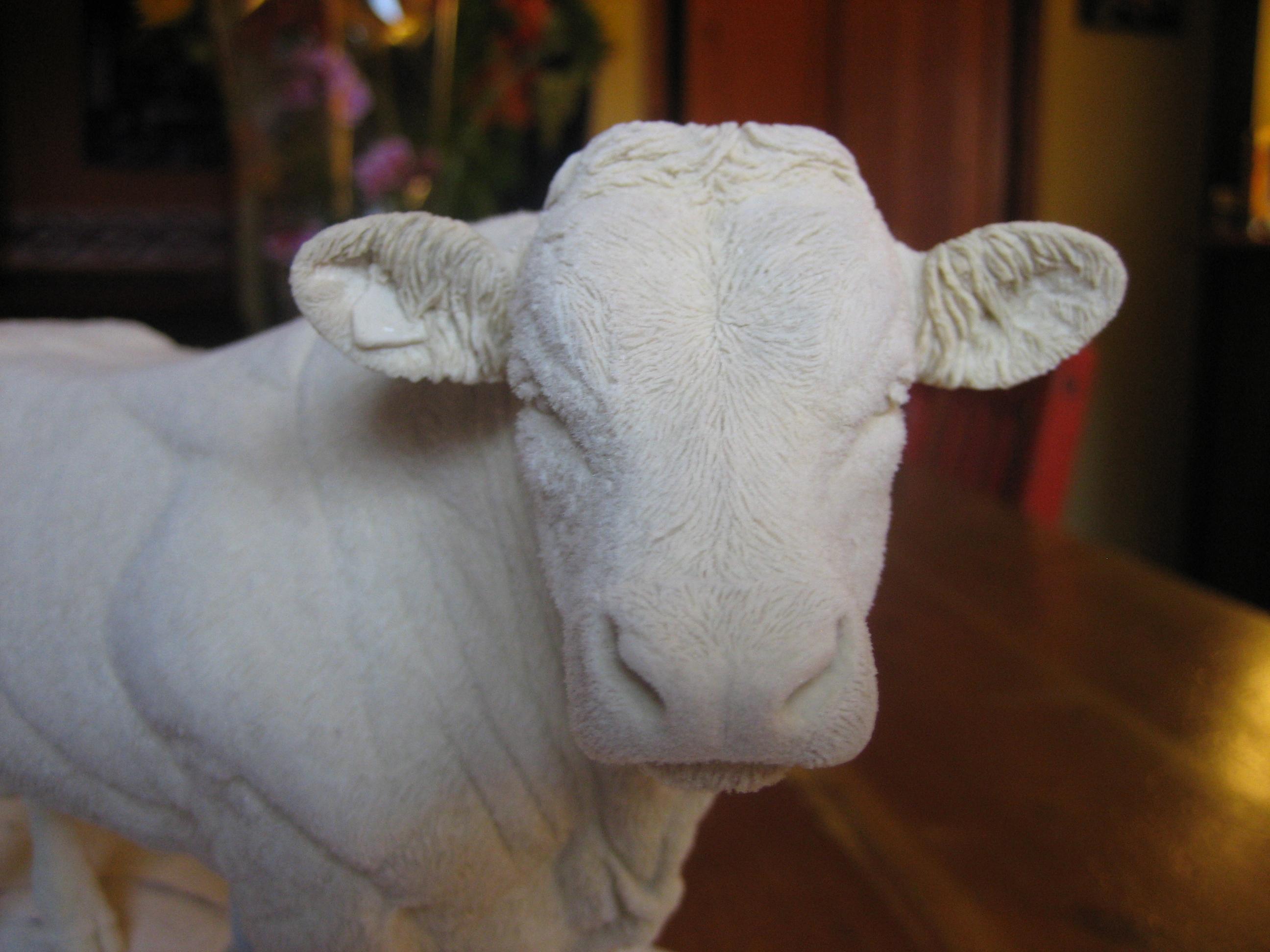 Bull wax 2010
