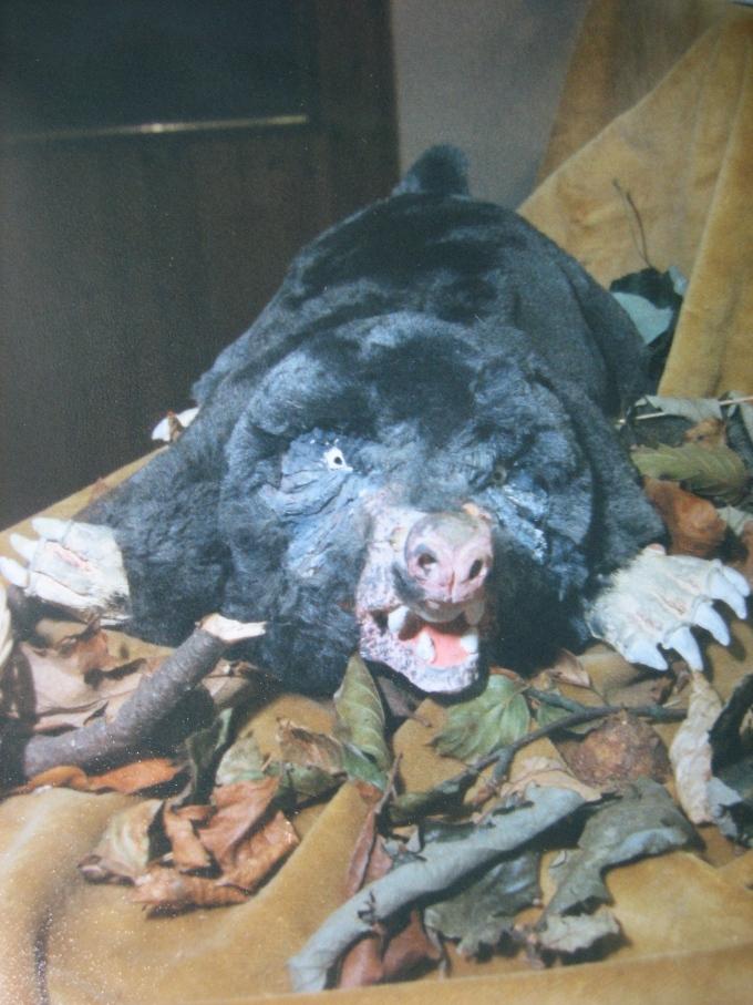 Angry mole- 1988
