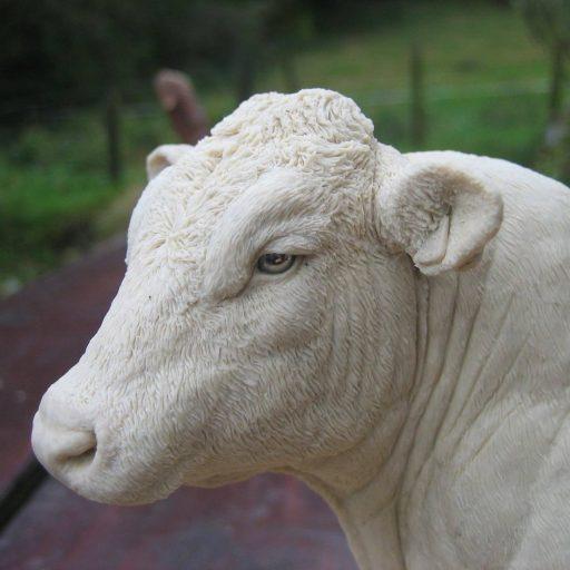 Cattle Sculpture